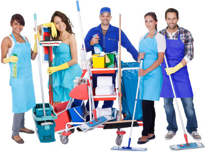 Expert Cleaners at Tidy Up