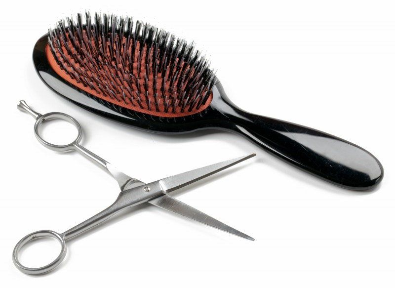 brush and scissors