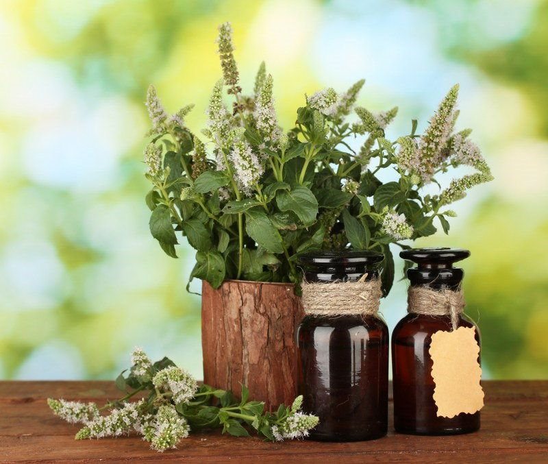 peppermint oil house cleaners