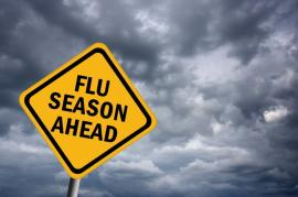 Flu Season is Coming - Keep Your Home Healthy
