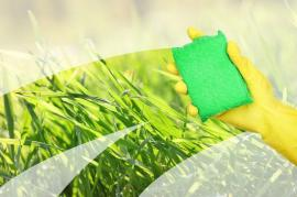 Green Cleaning Products You Should NEVER Mix