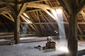 The Hidden Dangers in Your Attic